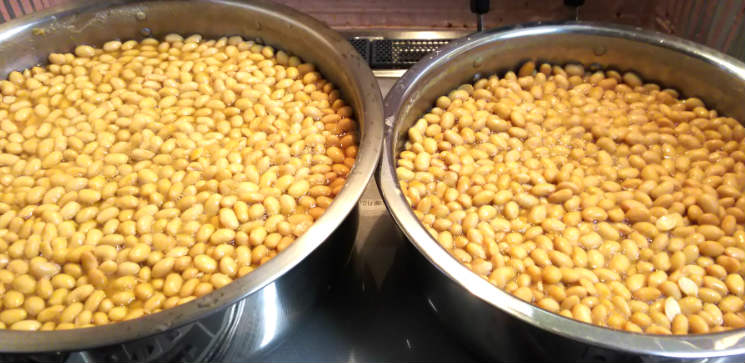 味噌づくりのための無農薬大豆